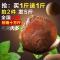 【Go云易商城】桂圆干500gX2袋莆田特产4A非无核龙眼肉干
