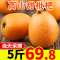 【Go云易商城】5斤枇杷新鲜水果鲜甜包邮