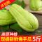 新鲜佛手瓜5斤包邮高原新鲜蔬菜洋瓜捧瓜丰收瓜窝瓜寿瓜农家自种