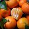 【5斤装】砂糖橘 顺丰水果新鲜现货广西小沙糖橘应季很甜柑桔子
