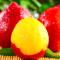 黄心油桃现货5斤新鲜水果应当季孕妇现摘脆甜大桃子整箱非水蜜桃