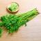 【Go云易商城】香芹250g/份青菜 芹菜 叶菜 新鲜蔬菜