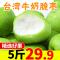 【Go云易商城】现摘现发台湾牛奶大青枣新鲜水果当季冬枣贵妃蜜枣脆枣子5斤包邮