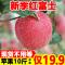 2019新季红富士苹果10斤带箱批发包邮新鲜水果丑萍果脆甜坏果包赔