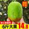 陕西周至绿心猕猴桃新鲜水果当季5斤整箱奇异果徐香弥狝猴桃包邮