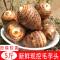 【Go云易商城】5斤云南芋头新鲜小芋头芋艿粉糯毛芋头香芋非荔浦芋头新鲜蔬菜