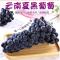 新鲜葡萄当季水果